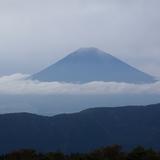 千葉県成田市整体院 治らない病気の第1位が腰痛。