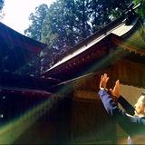 成田市自然治癒力整体院  本来持っているカラダのポテンシャルを引き出そう!(2)