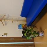 成田市腰痛専門院 世界の長寿村にはある共通点が。